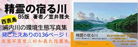 精霊の宿る川-日本で一番魚種が多い、沖縄県西表島の浦内川-